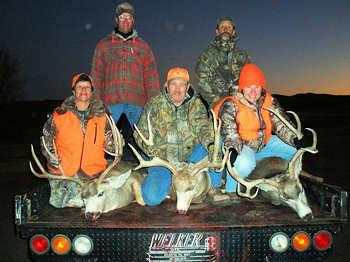 Nebraska Deer